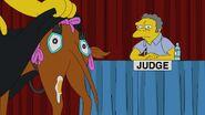 Judge Me Tender 1
