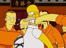 Homer shaolins