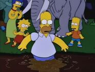 Bart Gets an Elephant 96