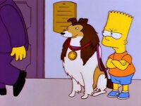 Laddie e Bart
