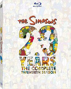230px-The Simpsons-S20 cover