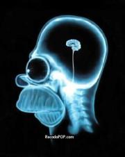 180px-Homer o pensador