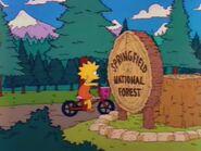 Mr. Lisa Goes to Washington 27