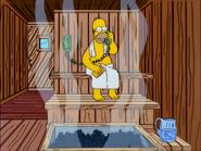 TheMansionFamily-HomerSauna