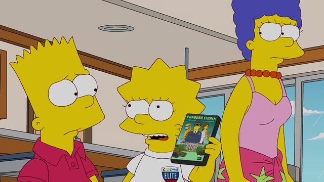 File:A Totally Fun Thing That Bart Will Never Do Again 174.JPG