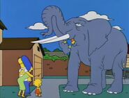Bart Gets an Elephant 38