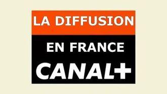 Parlons Simpson 10 La diffusion en France