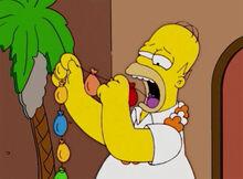 Homer mula