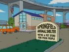 Springfield animal shelter