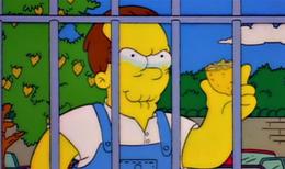 Homer shelbyville avat1