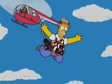 Homerazzi pula helicoptero