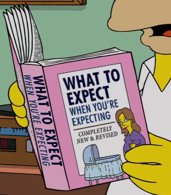 what to expect when your expecting book