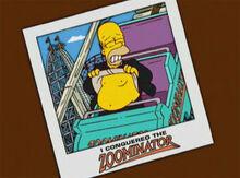 Homer foto zoominator