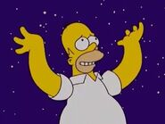 Homer night