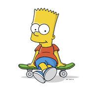 Sitsonskateboard