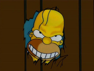 Homer Goes Mad
