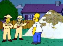 Homer apicultores abelhas