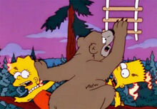 Urso 11x18 lisa bart fogo escada