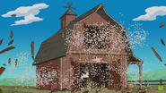 Chicken farm invasion