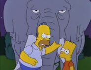 Bart Gets an Elephant 92