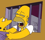 Homerjail