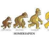 A Evolução do Homer