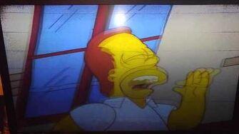 Homer Simpson girls just wanna have fun-0