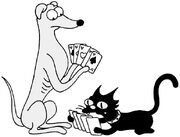 Dog cat cards