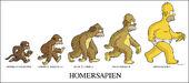 Le Vrai Descendant du singe