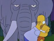 Bart Gets an Elephant 91