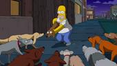 DogtownPromo4