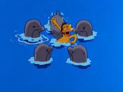 Lenny sendo atacado pelos golfinhos