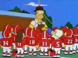 Gatos Bravos de Springfield