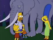 Bart Gets an Elephant 104