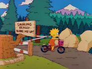 Mr. Lisa Goes to Washington 28