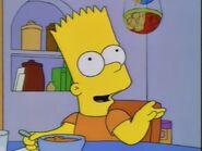 'Round Springfield 5