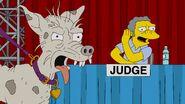 Judge Me Tender 50