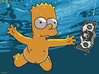 Bart swimming
