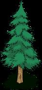 Tree07 transimage