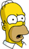 Homer Confused Icon