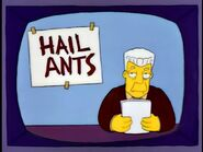 Hail Ants in Episode