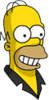 Pin Pal Homer Happy Icon