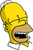 Homer Laughing Icon