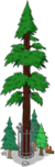 World's Largest Redwood Level 7