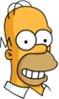 Homer Future Happy Icon
