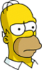 Homer Serious Icon