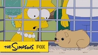 "Lisa's Guinea Pig from ""The War Of Art"" THE SIMPSONS ANIMATION on FOX"