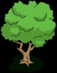 Tree00 transimage