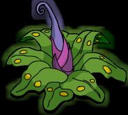Prehistoric Plant Menu