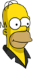 Pin Pal Homer Icon